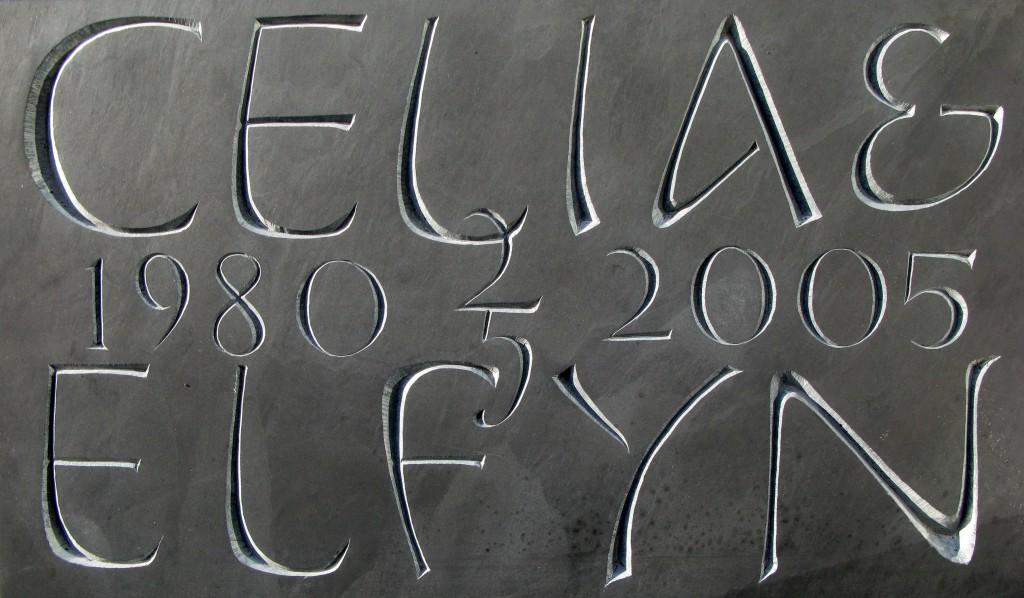 celia elfyn09